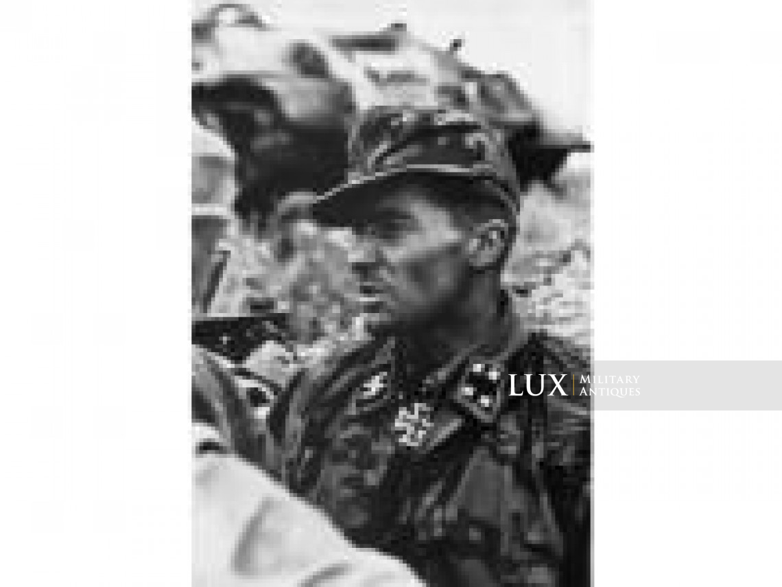 Waffen-SS issued M42 camouflage field cap - photo 8
